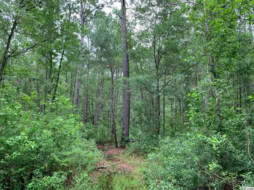 000 Gapway Rd., Andrews, SC, 29510, Not within a Subdivision Home For Sale