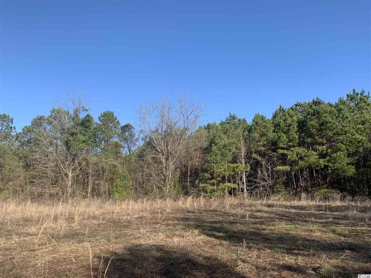 21 ac Guess Rd., Greeleyville, SC, 29056, Not within a Subdivision Home For Sale