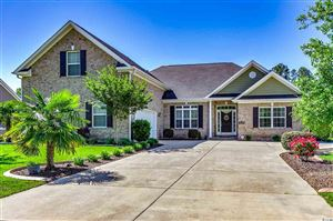 Photo of 2019 Wood Stork Dr., Conway, SC 29526 (MLS # 1909136)