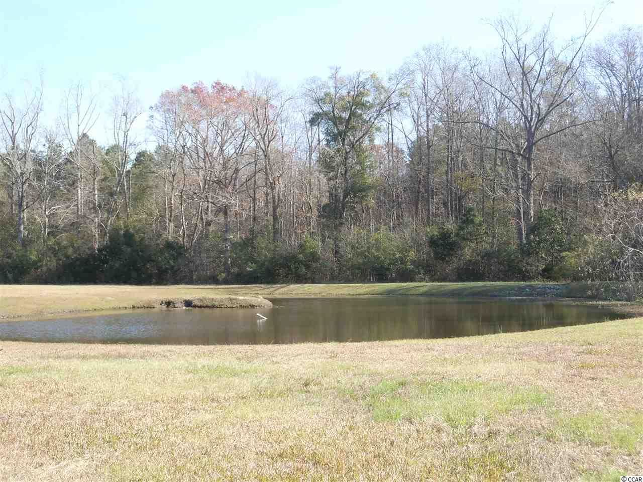 1 Misty Ln., Whiteville, NC, 28472, Waterfall Home For Sale