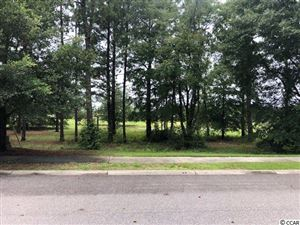 Photo of 1463 Whooping Crane Dr., Conway, SC 29526 (MLS # 1915138)