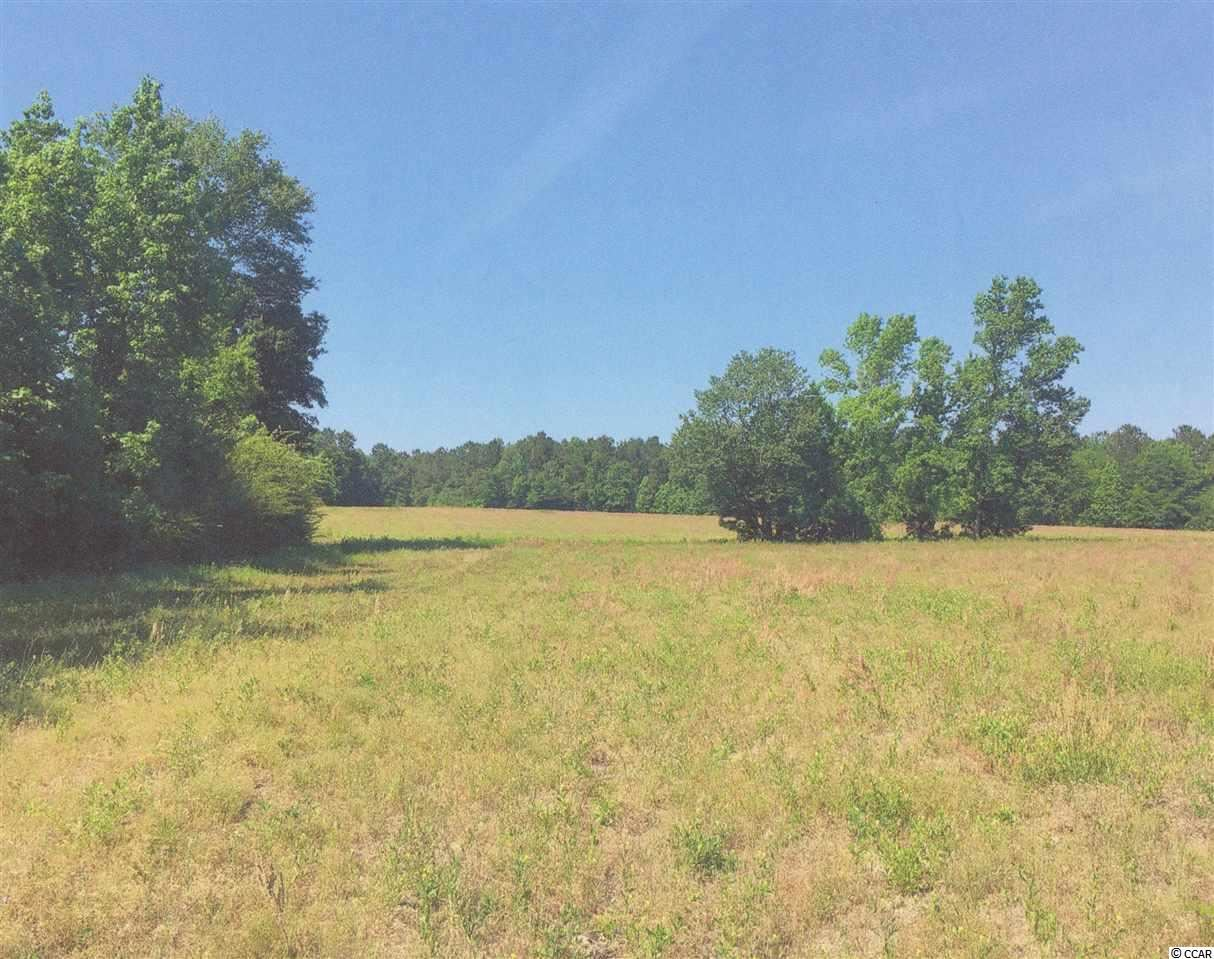 225 AC Cox Rd., Hemingway, SC, 29554, Not within a Subdivision Home For Sale