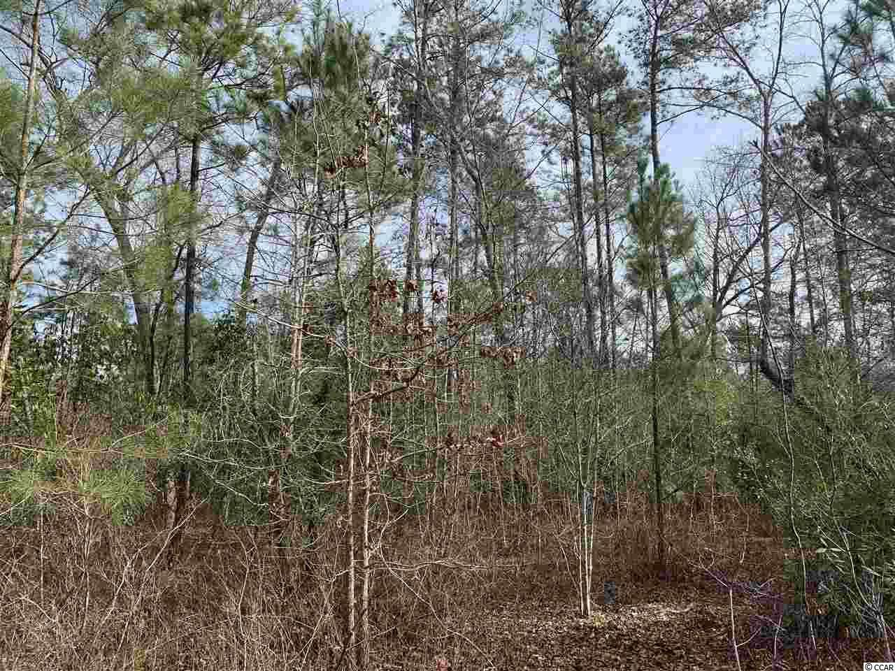 00 Catclaw Rd., Andrews, SC, 29510, Not within a Subdivision Home For Sale