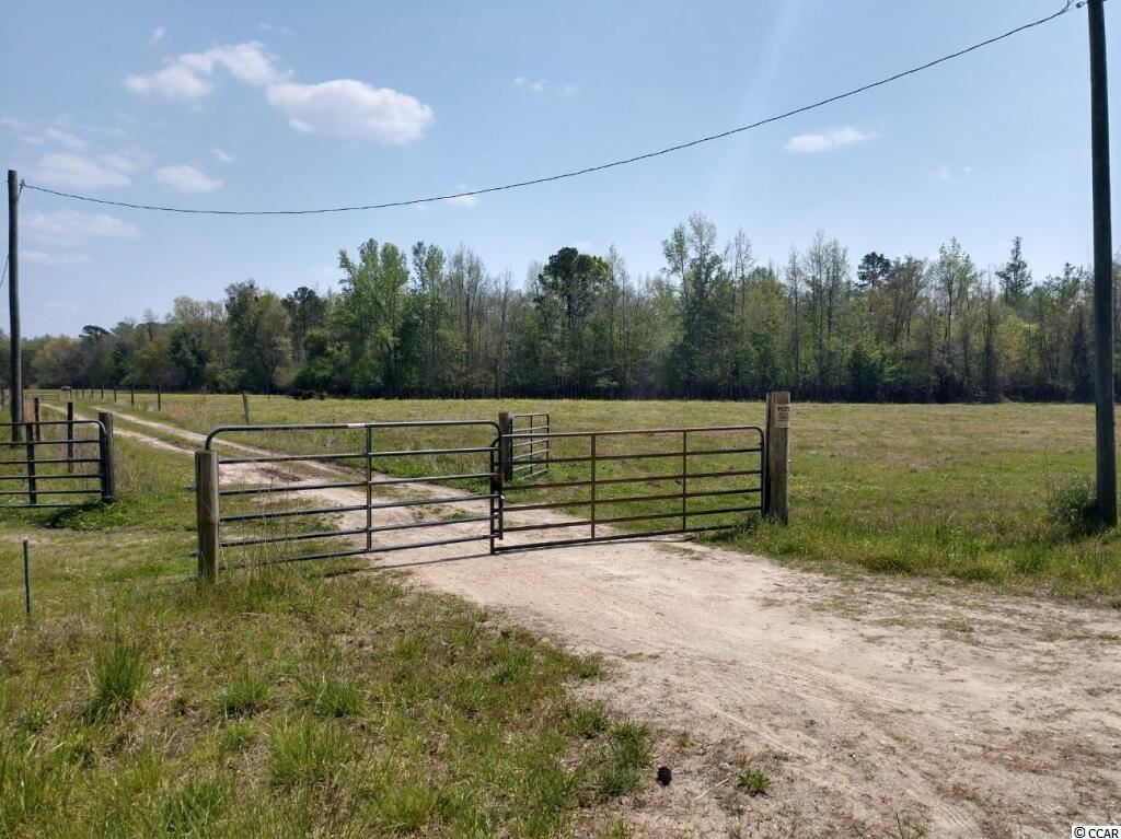 TBD Cascade Rd., Green Sea, SC, 29545, Not within a Subdivision Home For Sale