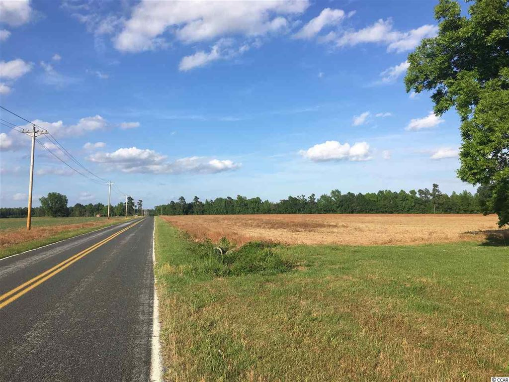88 AC Bartells Rd., Hemingway, SC, 29554, Not within a Subdivision Home For Sale