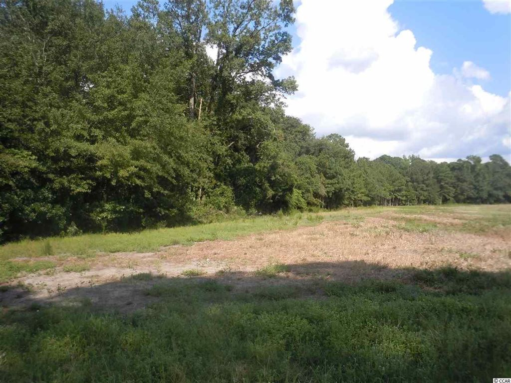 15357 Andrew Jackson Hwy., Fairbluff, NC, 28439, Not within a Subdivision Home For Sale