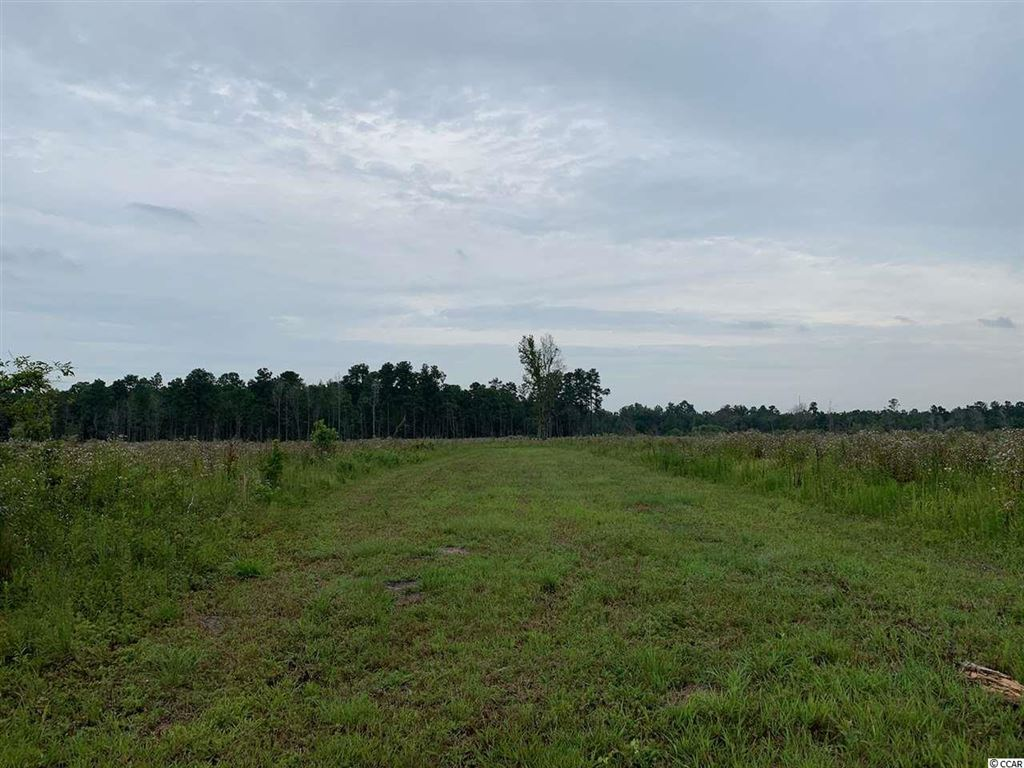 65 acres Sims Reach Rd., Kingstree, SC, 29556, Not within a Subdivision Home For Sale