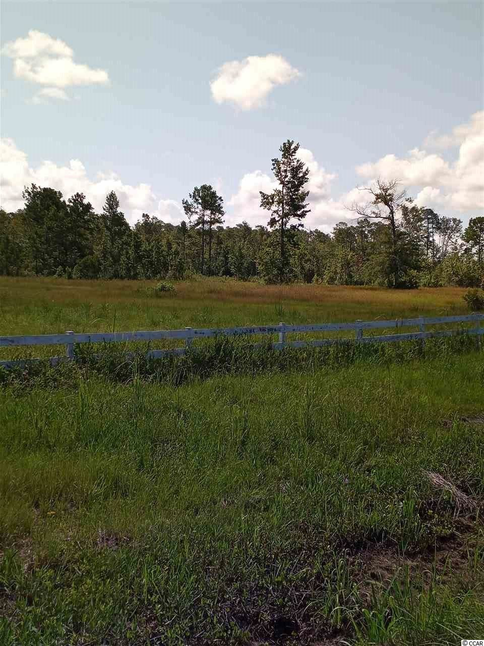 828 Chair Factory Rd., Nakina, SC, 28455, Not within a Subdivision Home For Sale