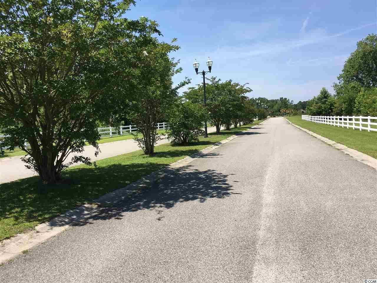 539 Mingo Trail, Johnsonville, SC, 29555, Persimmon Fields|Johnsonville, Home For Sale