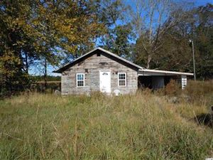 Photo of 15214 James B White Hwy, S., Tabor City, NC 28463 (MLS # 1723246)
