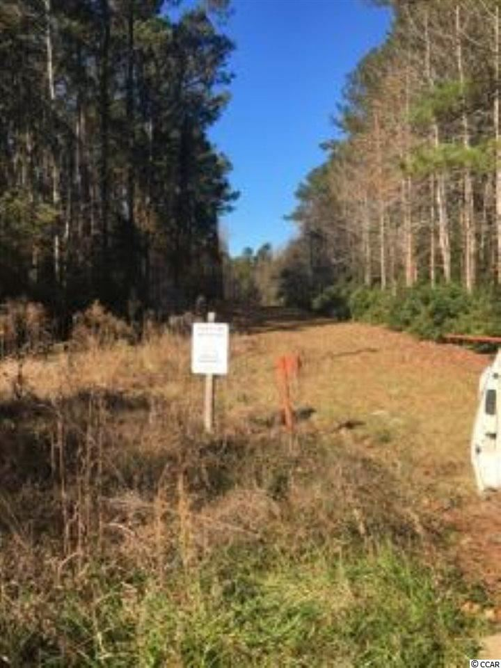 TBD I M Graham Rd., Kingstree, SC, 29556, Not within a Subdivision Home For Sale