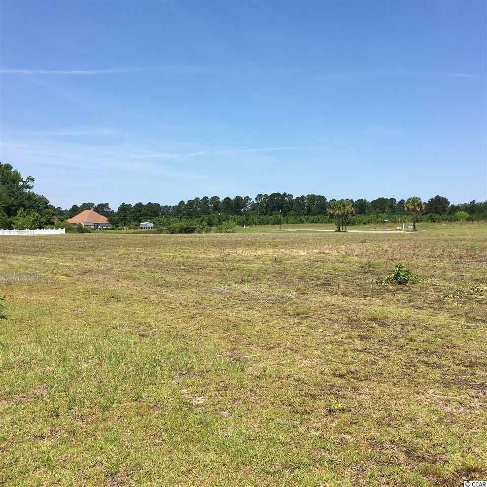 529 Mingo Trail, Johnsonville, SC, 29555, Persimmon Fields|Johnsonville, Home For Sale