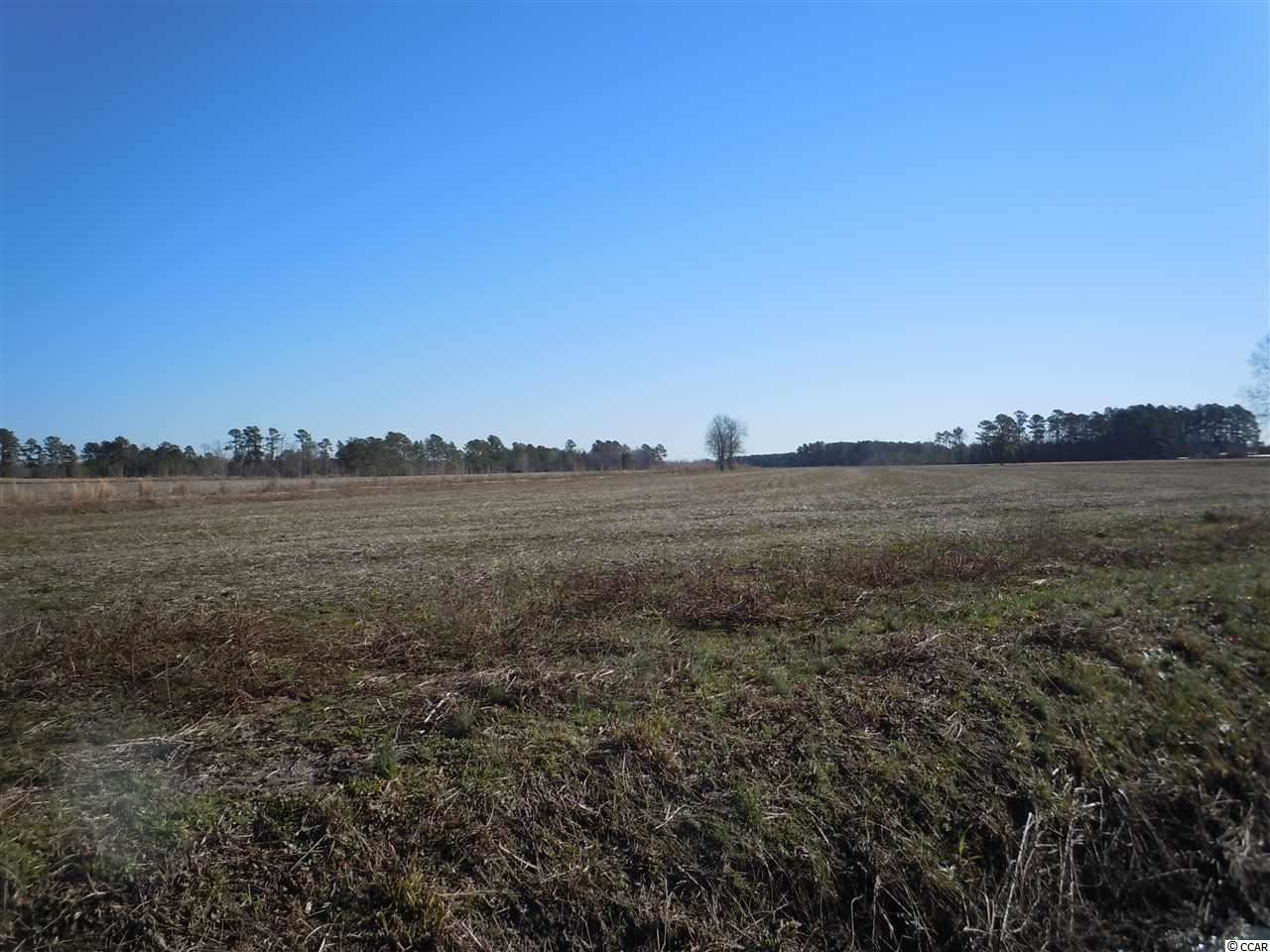 3388 Swamp Fox Hwy. W, Tabor City, NC, 28463, Not within a Subdivision Home For Sale
