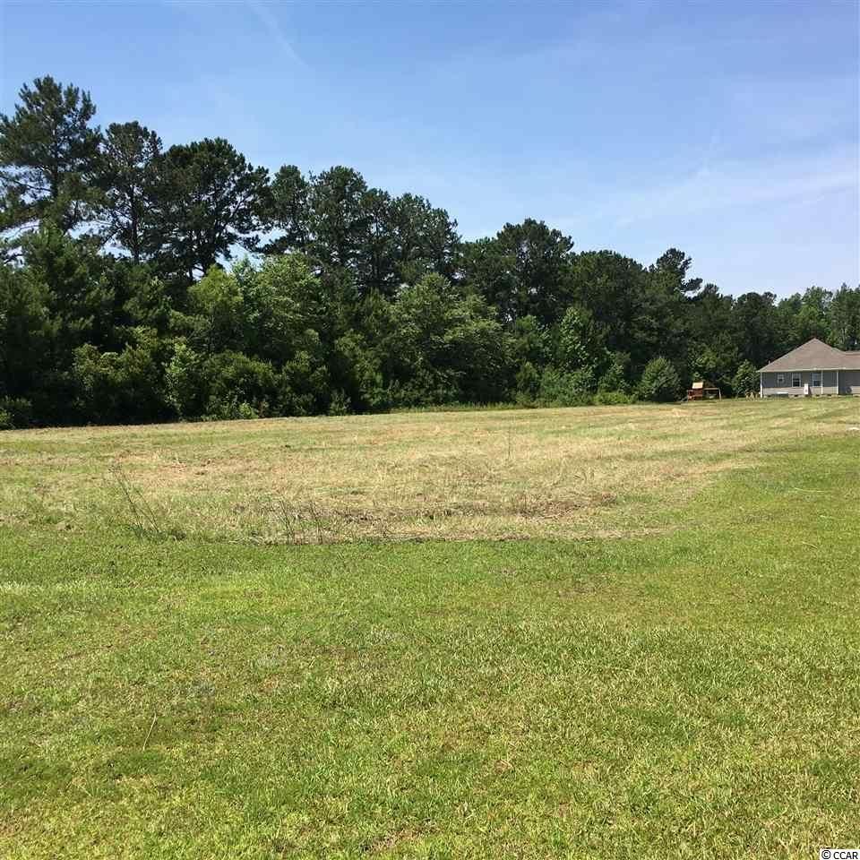 534 Mingo Trail, Johnsonville, SC, 29555, Persimmon Fields|Johnsonville, Home For Sale