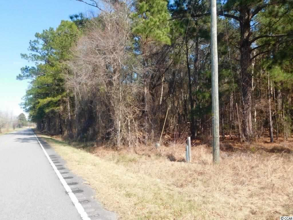 TBD Mount Olive Church Rd., Green Sea, SC, 29545, Not within a Subdivision Home For Sale