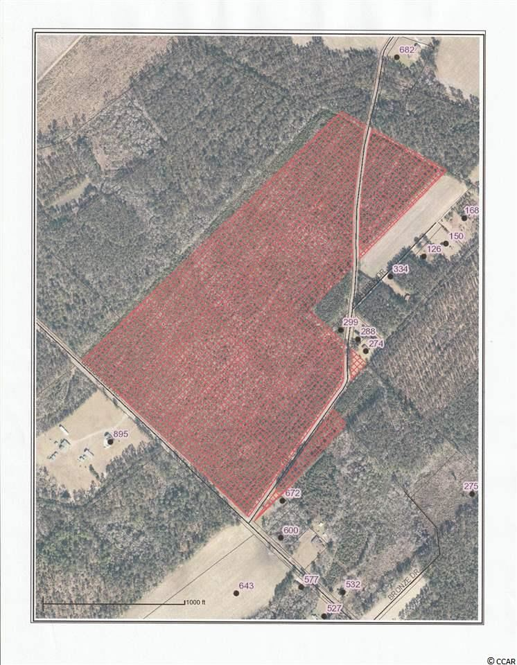 130 Brourton Rd., Hemingway, SC, 29554, Not within a Subdivision Home For Sale