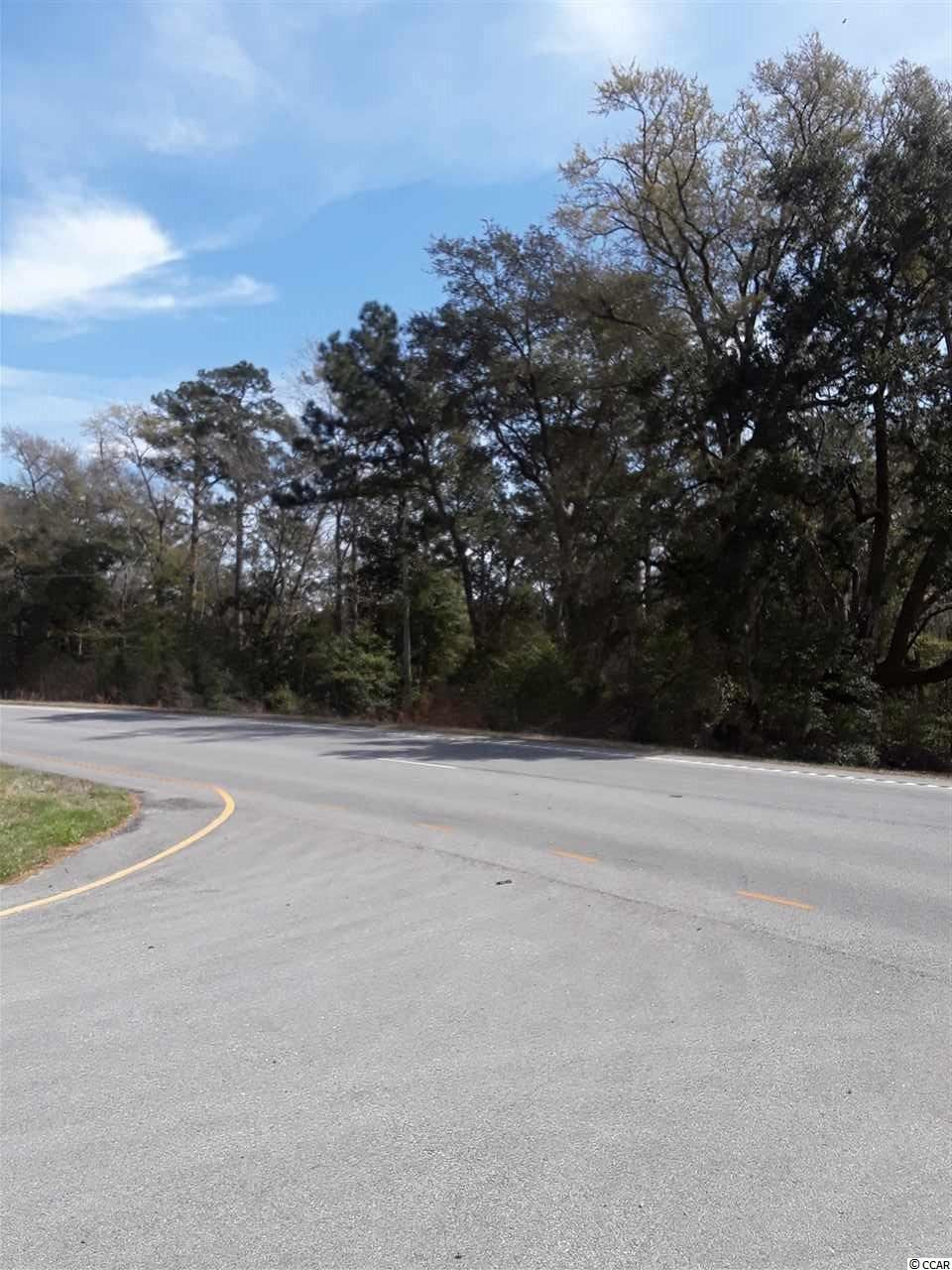 34.14 Acres Highway 17, McClellanville, SC, 29458, Not within a Subdivision Home For Sale