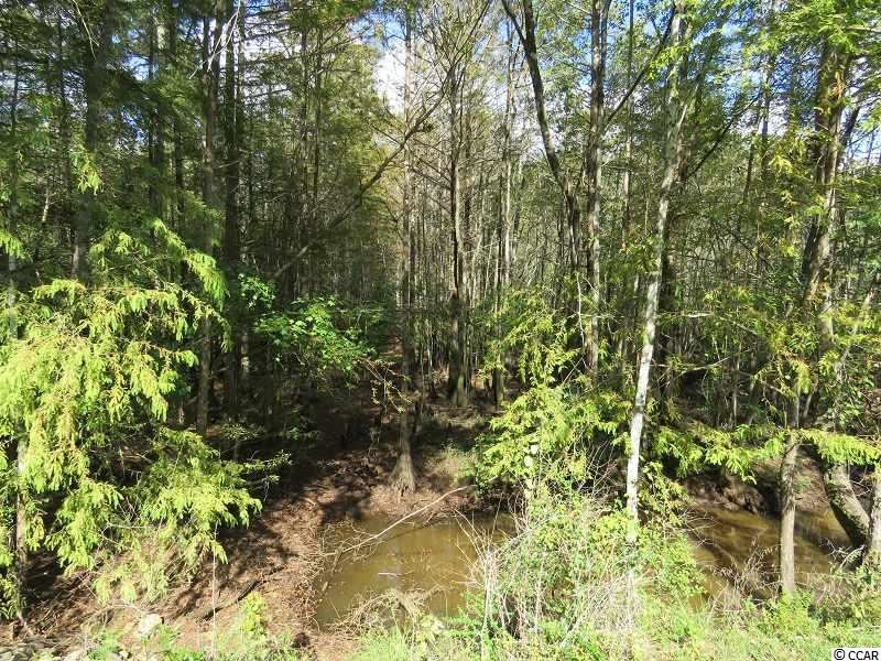 Tract 1 Swimming Hole Rd., Delco, NC, 28436, Not within a Subdivision Home For Sale