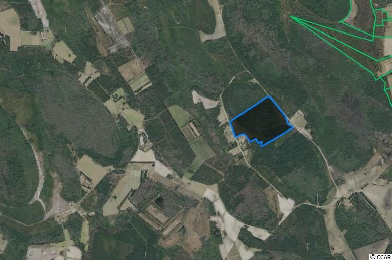 TBD Fifteen Mile Bay Rd., Nichols, SC, 29581, Not within a Subdivision Home For Sale