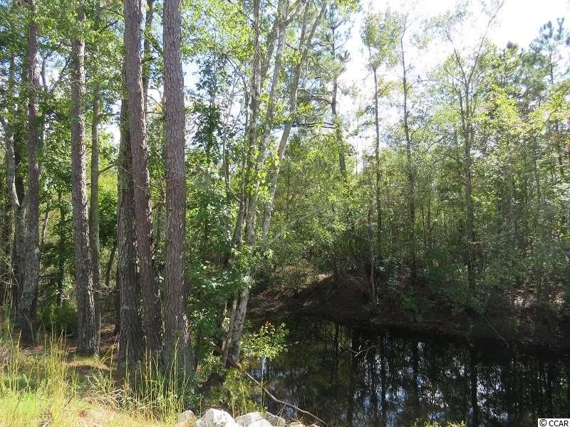 Tract 2 Swimming Hole Rd., Delco, NC, 28436, Not within a Subdivision Home For Sale