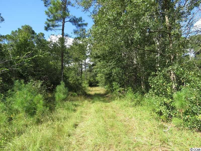 Tract 3 Swimming Hole Rd., Delco, NC, 28436, Not within a Subdivision Home For Sale