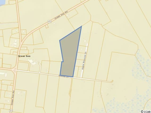 TBD School Dr., Green Sea, SC, 29545, Not within a Subdivision Home For Sale