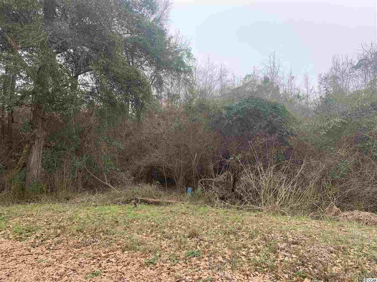 Tbt Maple St., Timmonsviile, SC, 29161, Not within a Subdivision Home For Sale