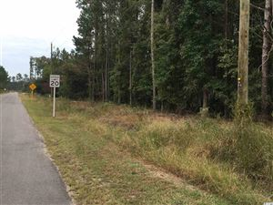 Photo of TBD Highway 66, Conway, SC 29526 (MLS # 1922332)