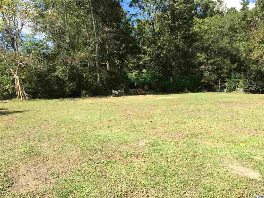 1359 Allison Landing Rd., Johnsonville, SC, 29555, Not within a Subdivision Home For Sale