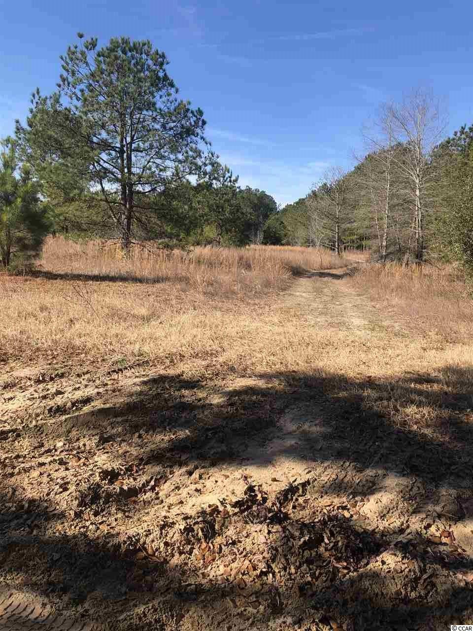 TBD Harold Rd., Nichols, SC, 29581, Not within a Subdivision Home For Sale