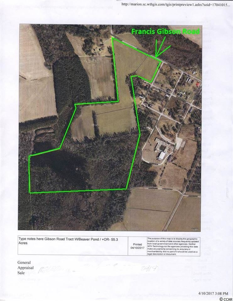 SW Francis Gibson Rd., Centenary, SC, 29519, Not within a Subdivision Home For Sale