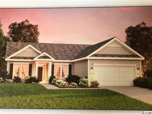 Photo of 427 Palm Lakes, Little River, SC 29566 (MLS # 1906340)