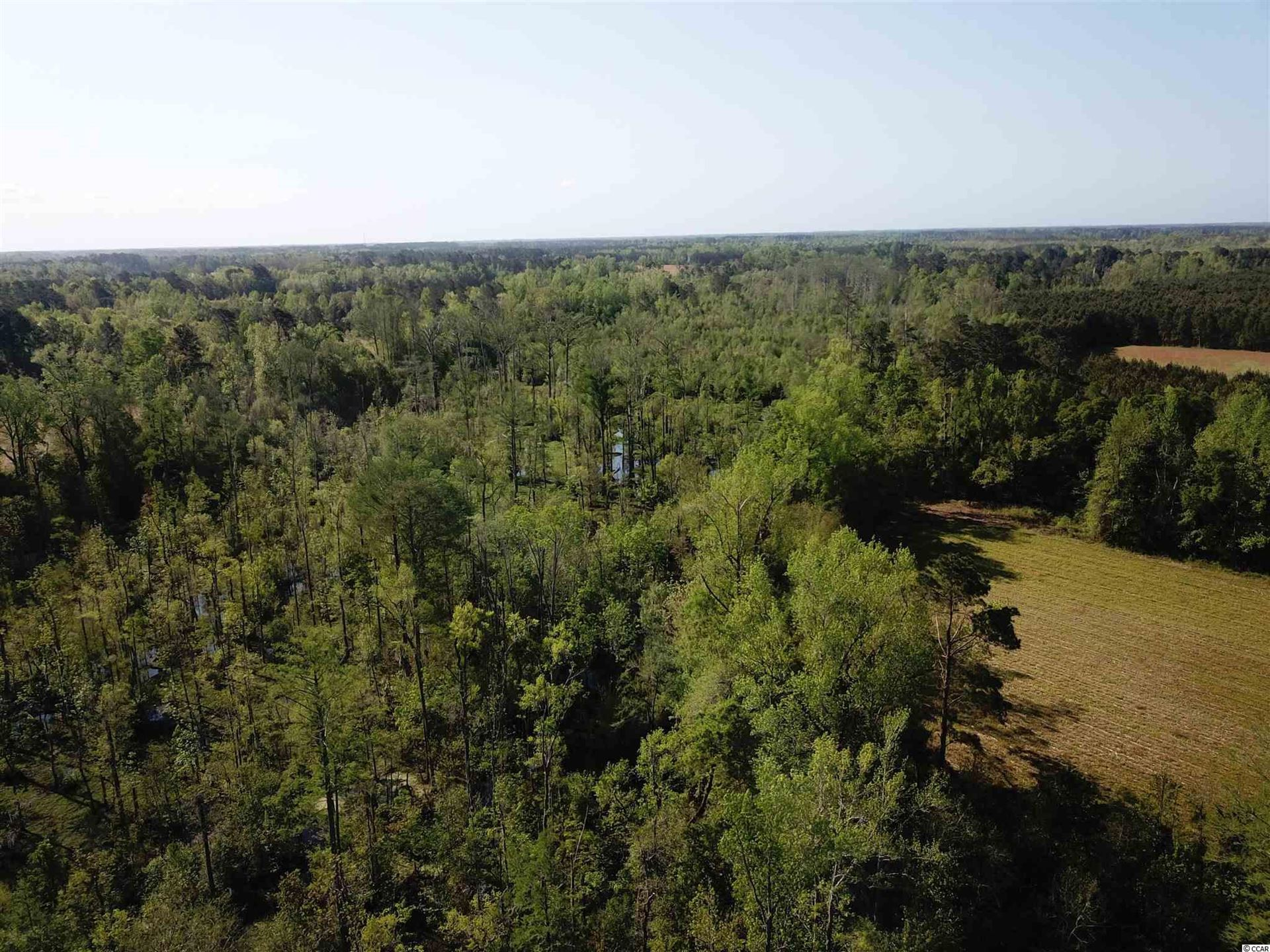 1475 Olive Dr., Green Sea, SC, 29545, Not within a Subdivision Home For Sale