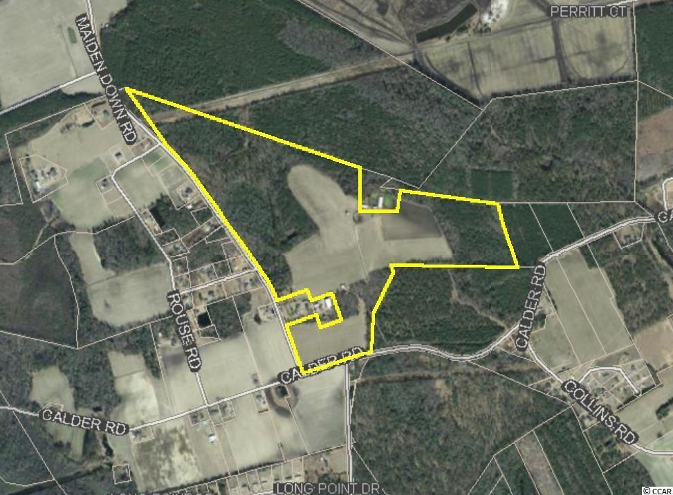 TBD Maidendown Rd., Marion, SC, 29571, Not within a Subdivision Home For Sale