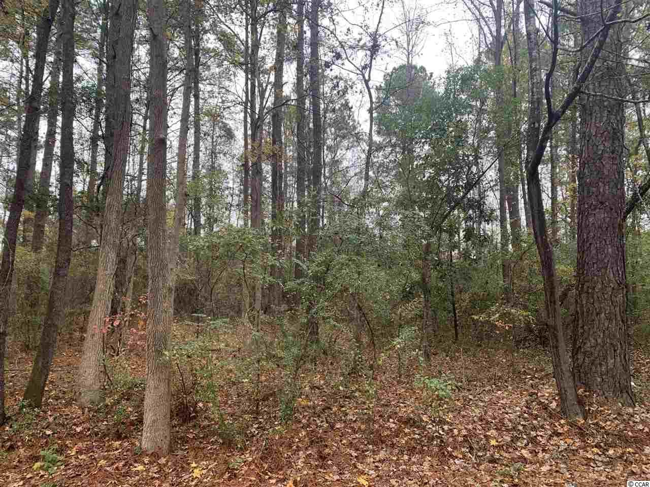 Lot 6 and 7 Cherry Hill Loop, Andrews, SC, 29510, Not within a Subdivision Home For Sale