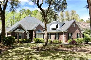 Photo of 498 Chapman Loop, Pawleys Island, SC 29585 (MLS # 1908362)
