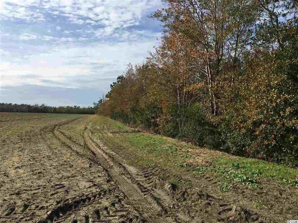 Parcel 2 Huckleberry Rd., Galivants Ferry, SC, 29544, Not within a Subdivision Home For Sale