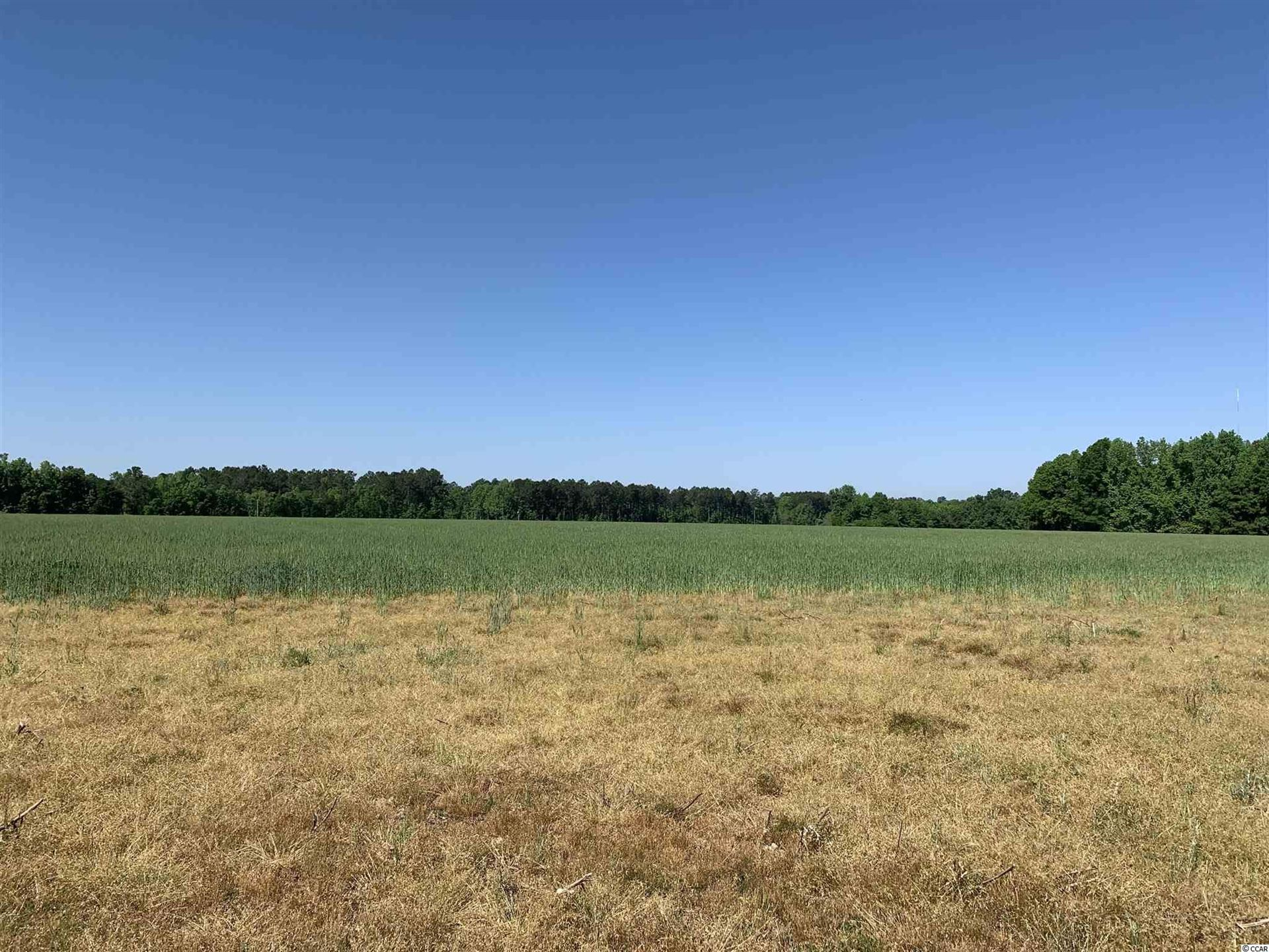 TBT Gourdin St., Salters, SC, 29590, Not within a Subdivision Home For Sale