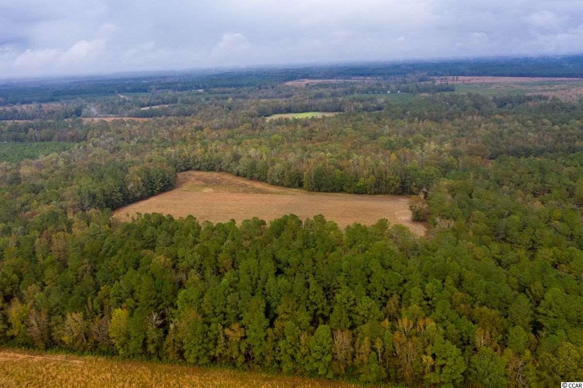 63 Acres Hanna Loop Rd., Hemingway, SC, 29554, Carvers Bay Home For Sale