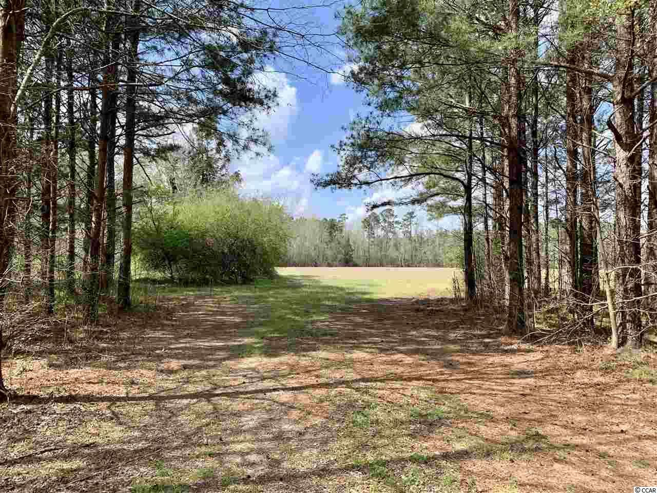 TBD Fair Bluff Hwy., Green Sea, SC, 29545, Not within a Subdivision Home For Sale