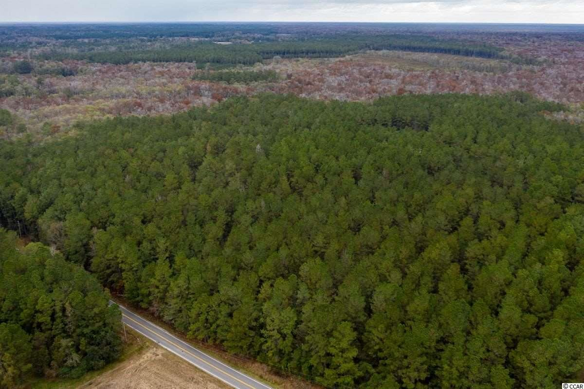37.2 Acres Old Pee Dee Rd., Hemingway, SC, 29554, Not within a Subdivision Home For Sale