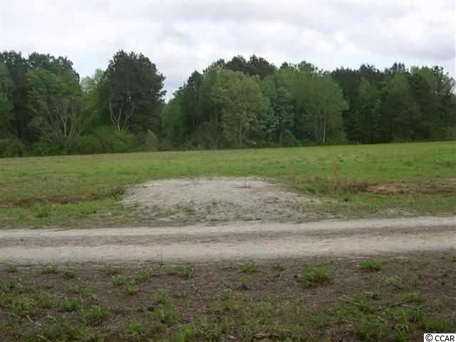 Lot  1 Clemmons Dr., Tabor City, NC, 28463, Meadow Wood Home For Sale