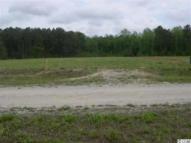 Lot  3 Clemmons Dr., Tabor City, NC, 28463, Meadow Wood Home For Sale