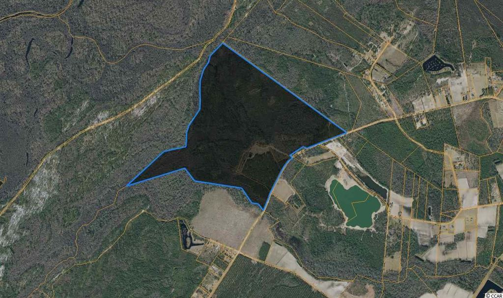 TBD Tranquil Rd., Galivants Ferry, SC, 29544, Not within a Subdivision Home For Sale