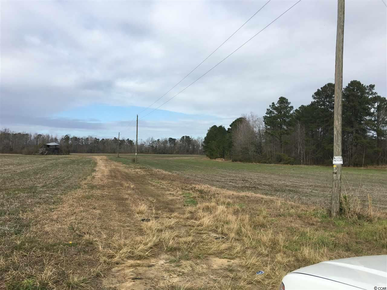 TBD Highway 45, Loris, SC, 29569, Not within a Subdivision Home For Sale