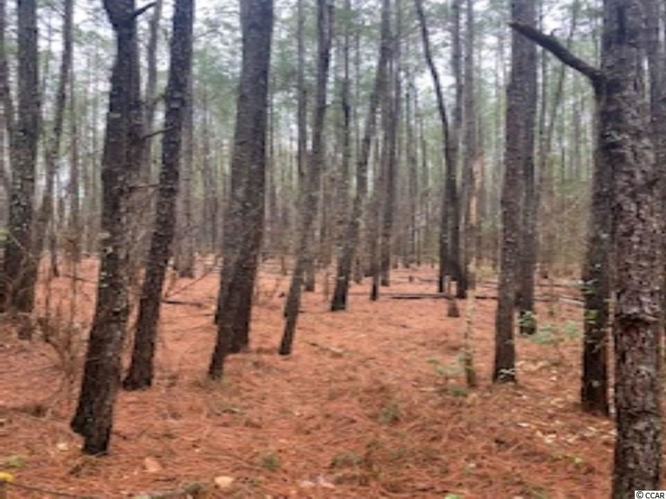 TBD Grainloyd Rd., Galivants Ferry, SC, 29544, Not within a Subdivision Home For Sale