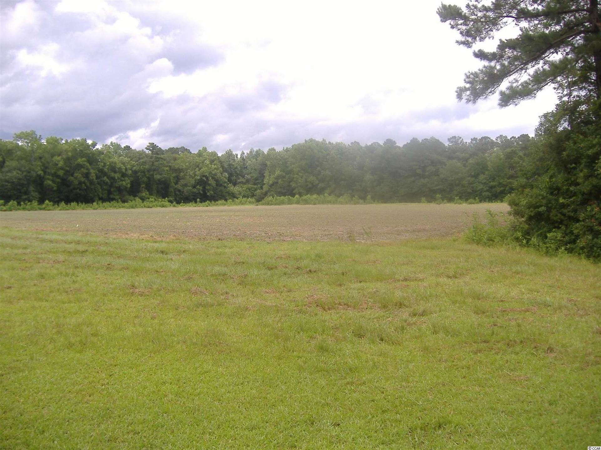 TBD Norton Rd., Green Sea, SC, 29545, Not within a Subdivision Home For Sale