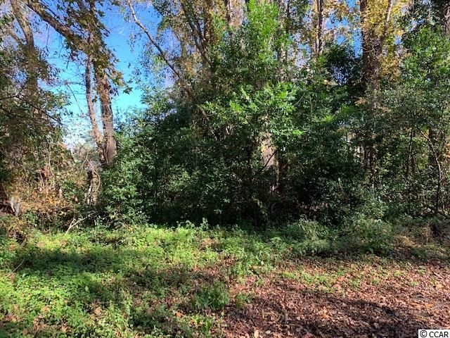 1016 29th Ave. S, Atlantic Beach, SC, 29582, Not within a Subdivision Home For Sale