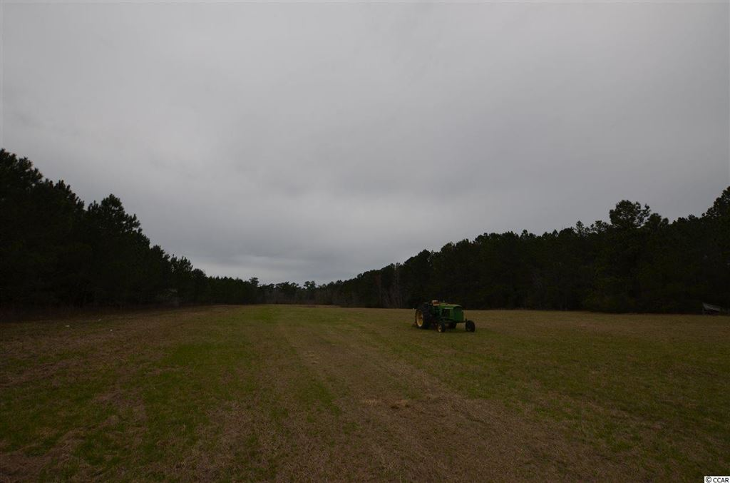 9900 N Highway 17, McClellanville, SC, 29458, Not within a Subdivision Home For Sale