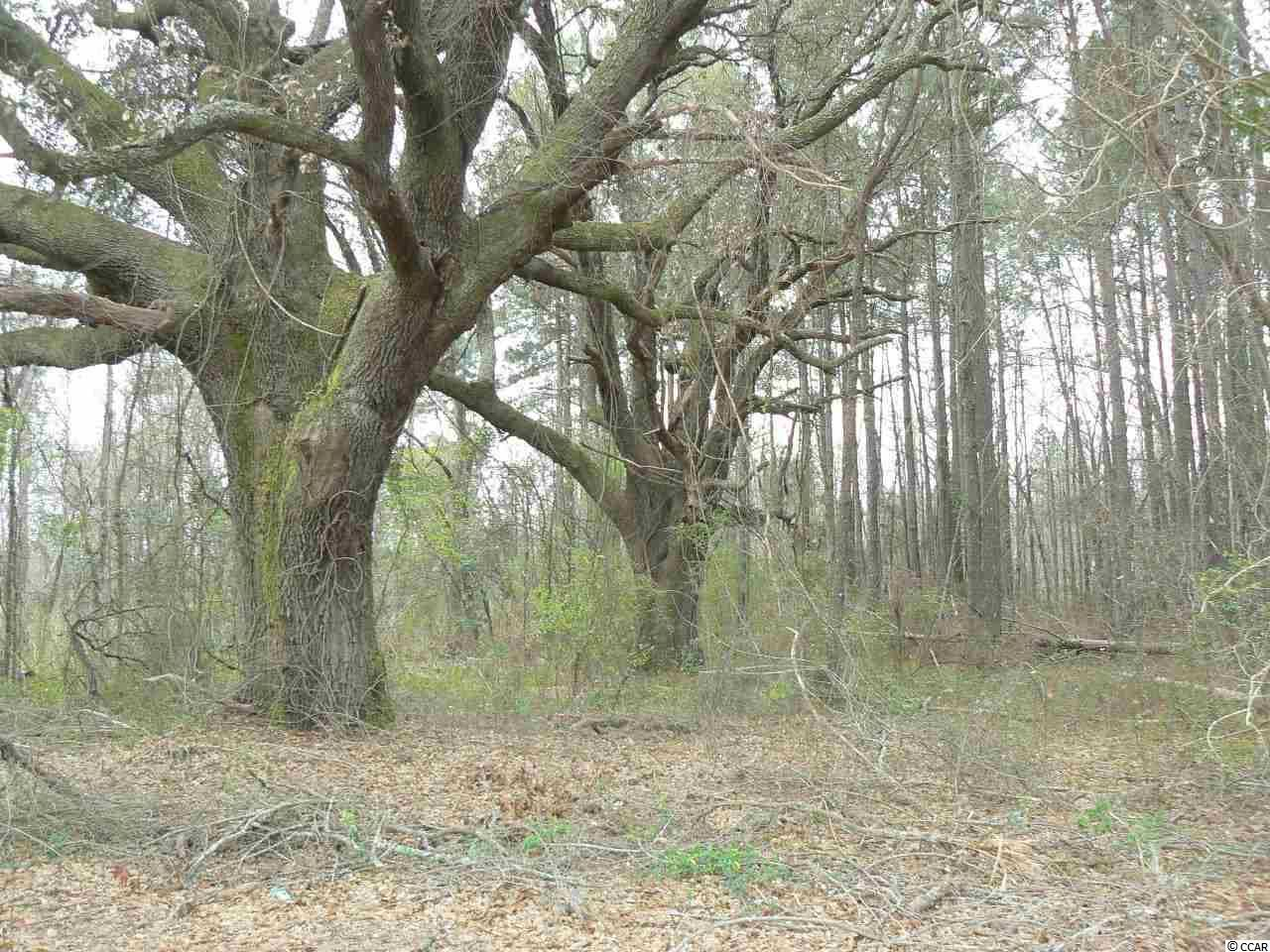 TBD Twin Oaks Dr., Marion, SC, 29571, Not within a Subdivision Home For Sale